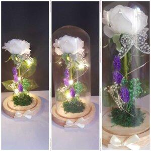 Cúpula de cristal batas de novia - c  pula de cristal 1 300x300 - Batas de novia personalizadas –  Ligas de novia –  Regalos originales