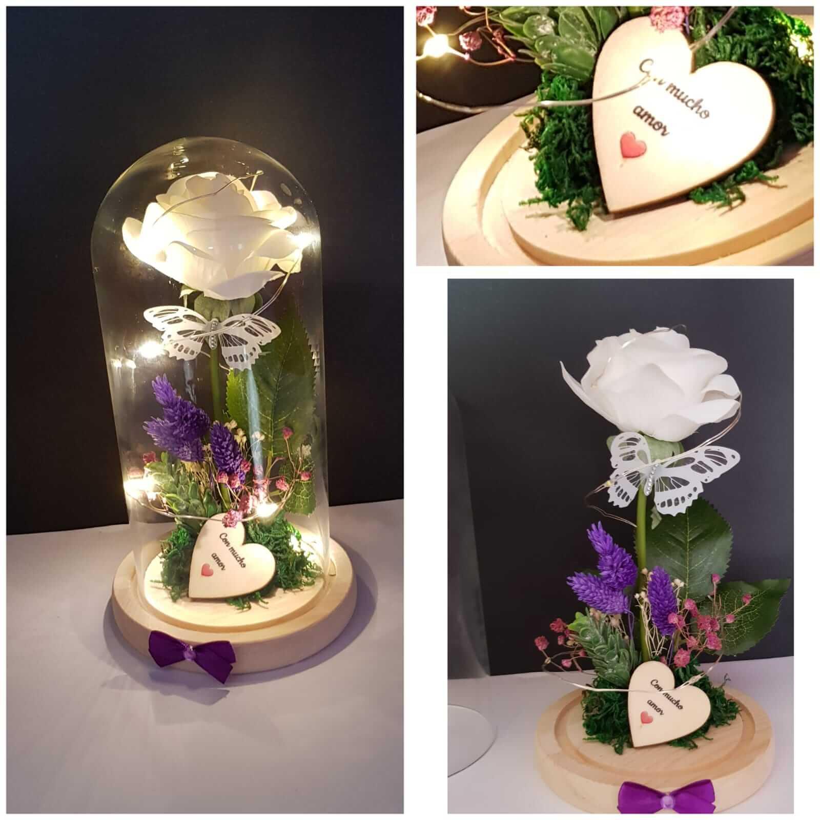 cupula de cristal cupula de cristal - Cupula de cristal 1 - Cupula de cristal
