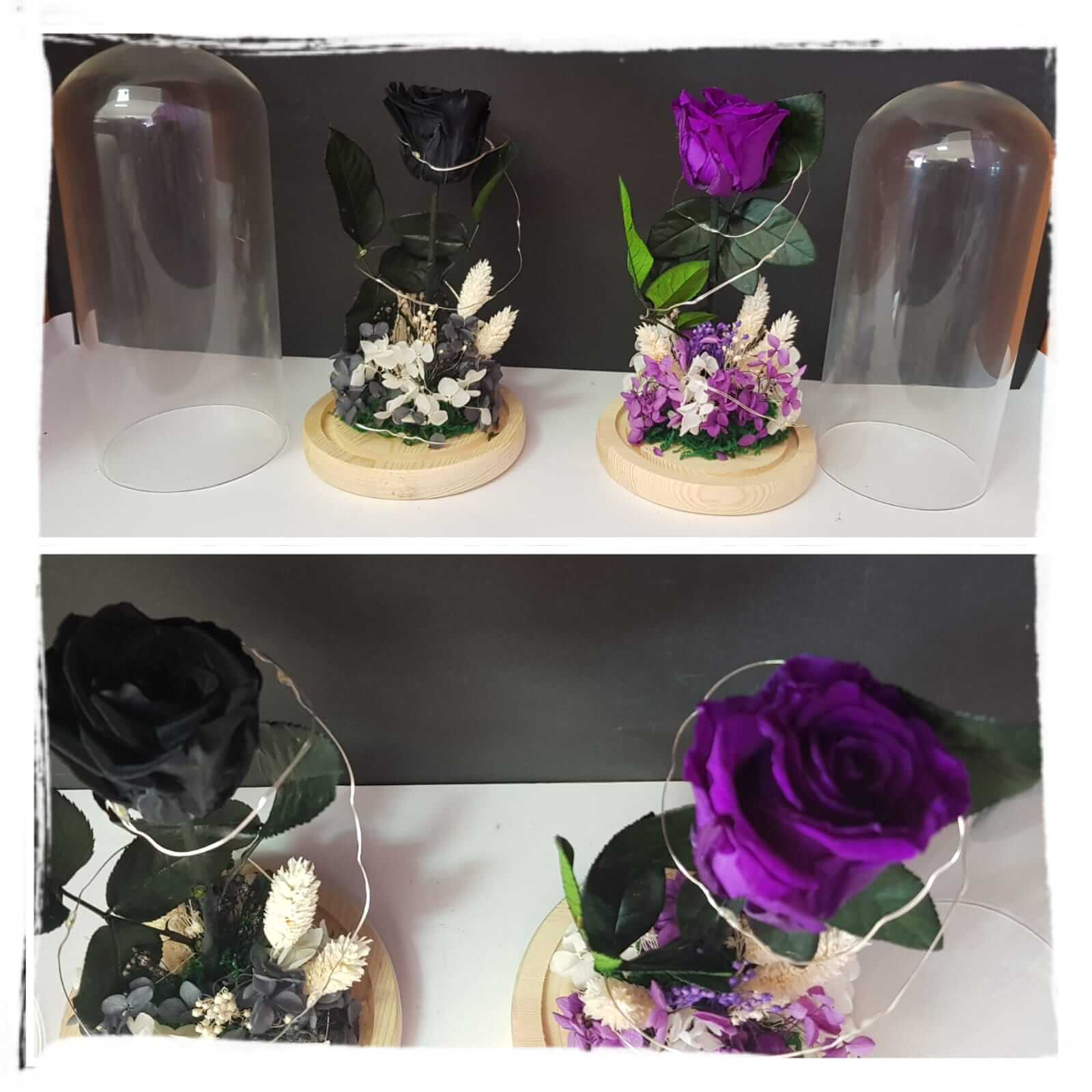 cupula de cristal cupula de cristal - cupula de cristal - Cúpula de cristal con rosa preservada
