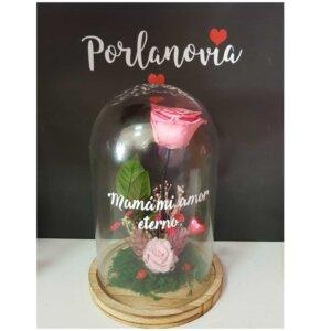 cupula de cristal con rosa