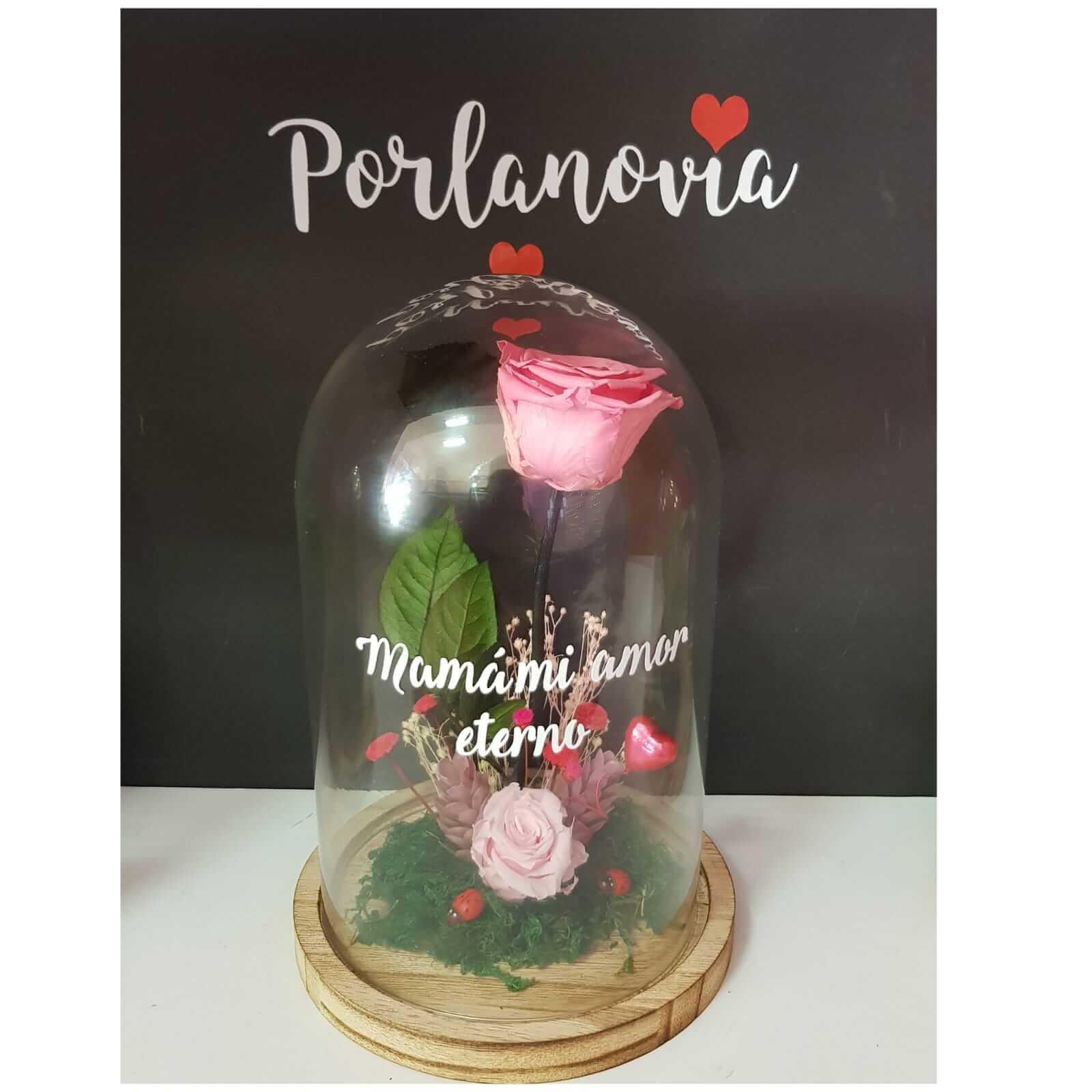 cupula de cristal cupula de cristal - cupula de cristal con rosa 2 - Cupula de cristal | Cupula de cristal, con rosa preservada