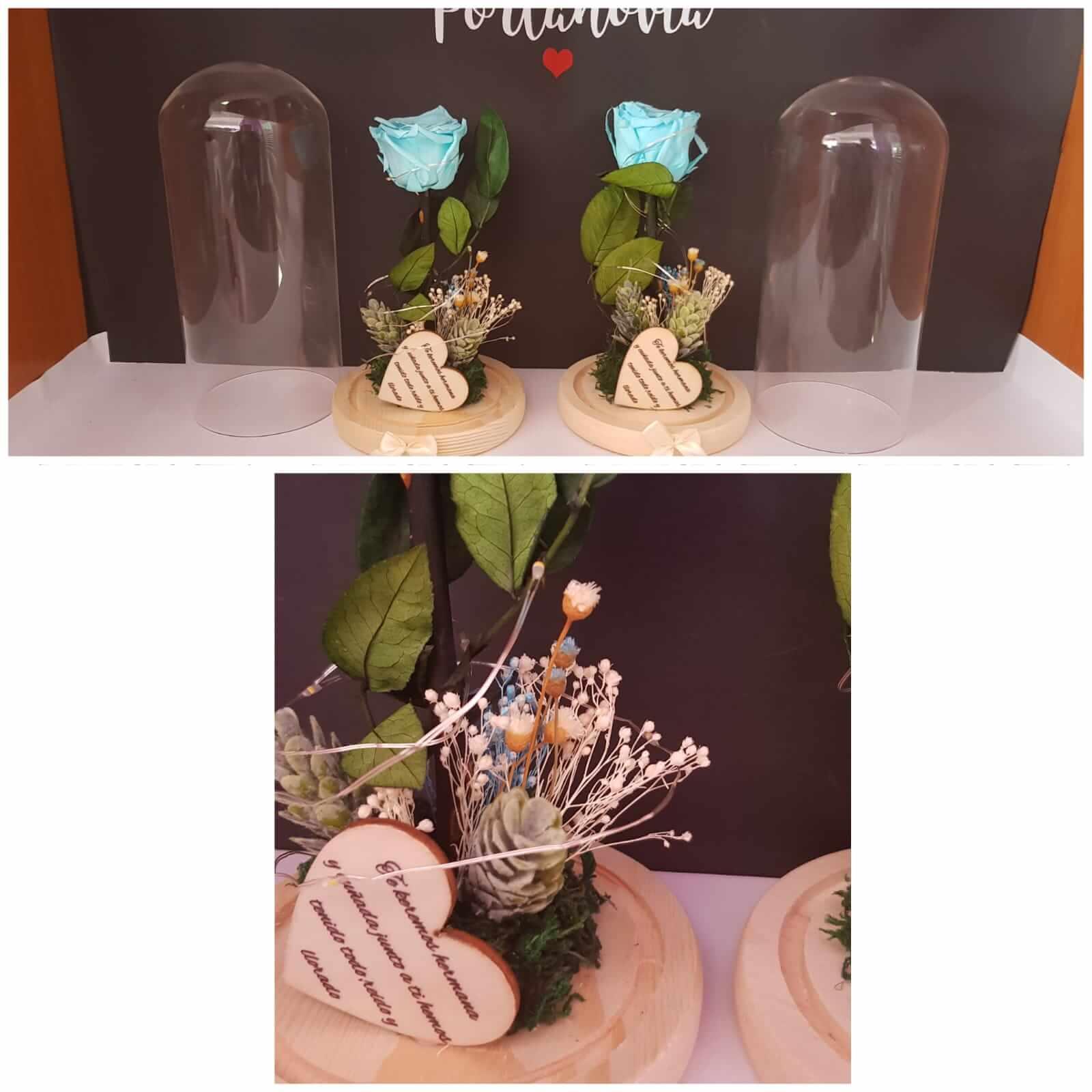 cupula de cristal cupula de cristal - C  pula de cristal con rosa preservada  - Cúpula de cristal con rosa preservada