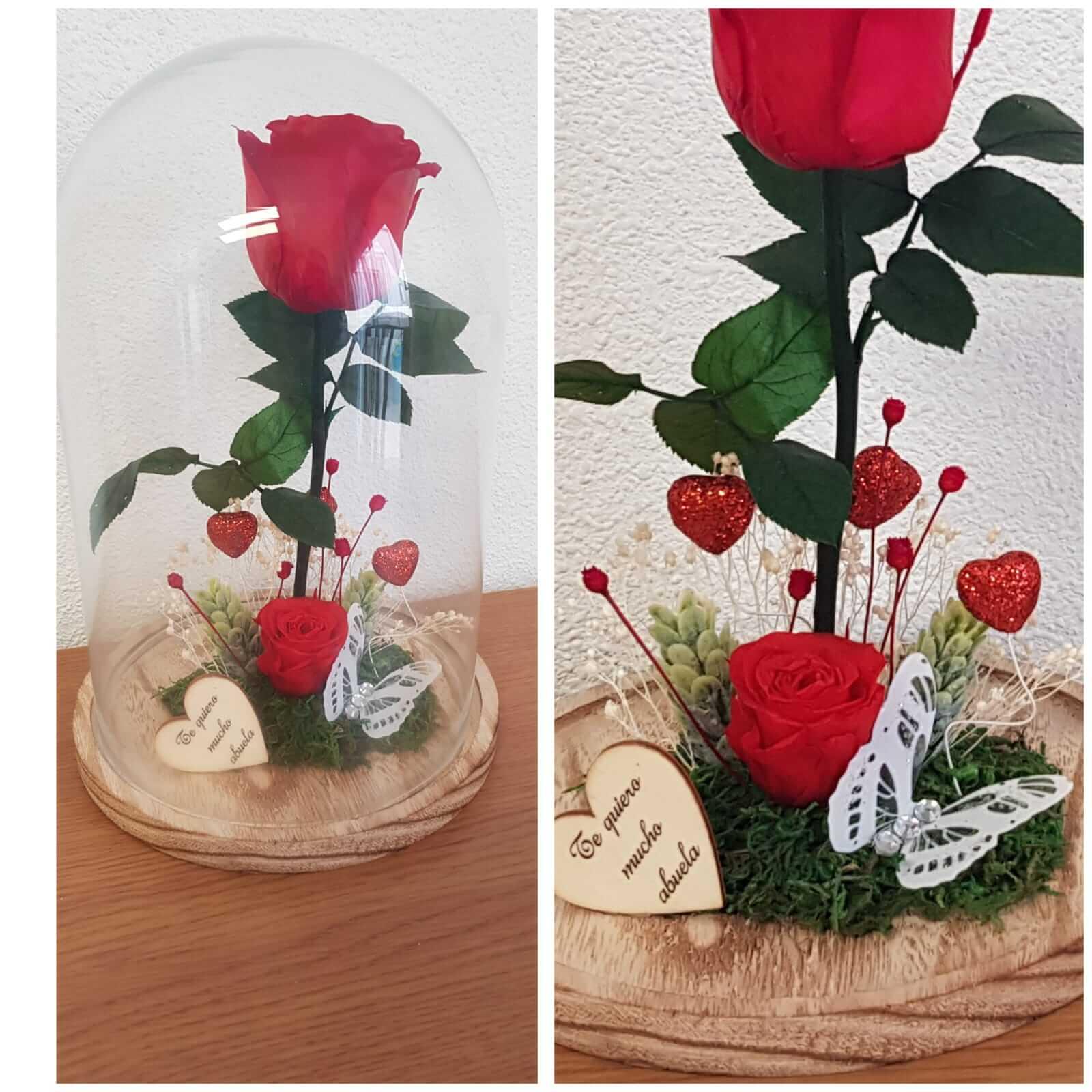 cupula de cristal cupula de cristal - Cupula de cristal con rosa preservada 3 - Cupula de cristal con rosa preservada