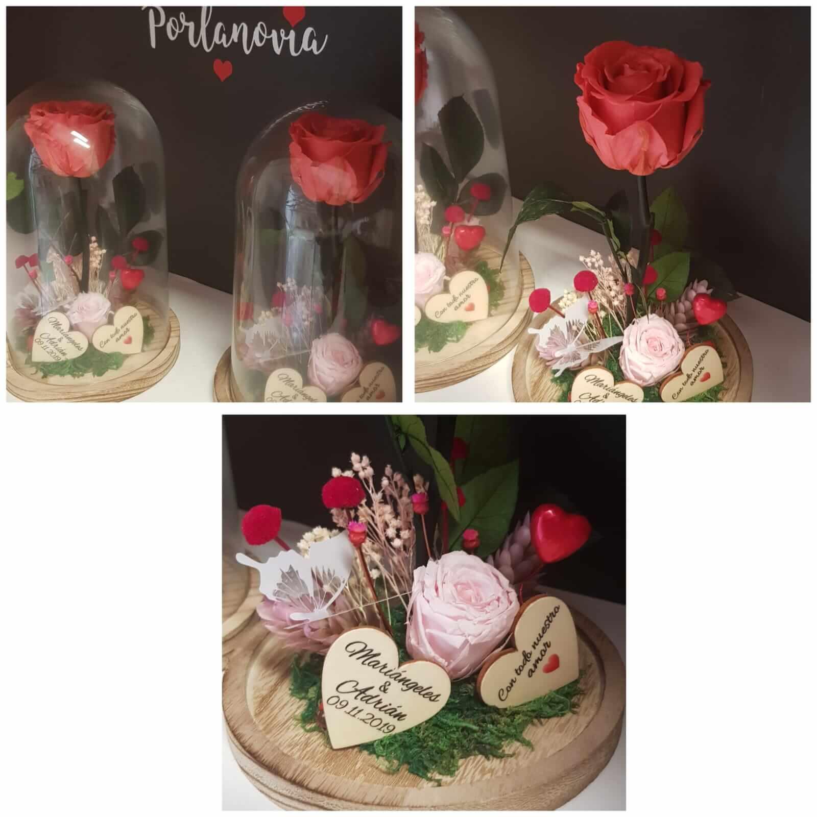 cupula de cristal cupula de cristal - Cupula de cristal con rosa preservada 1 - Cupula de cristal con rosa preservada