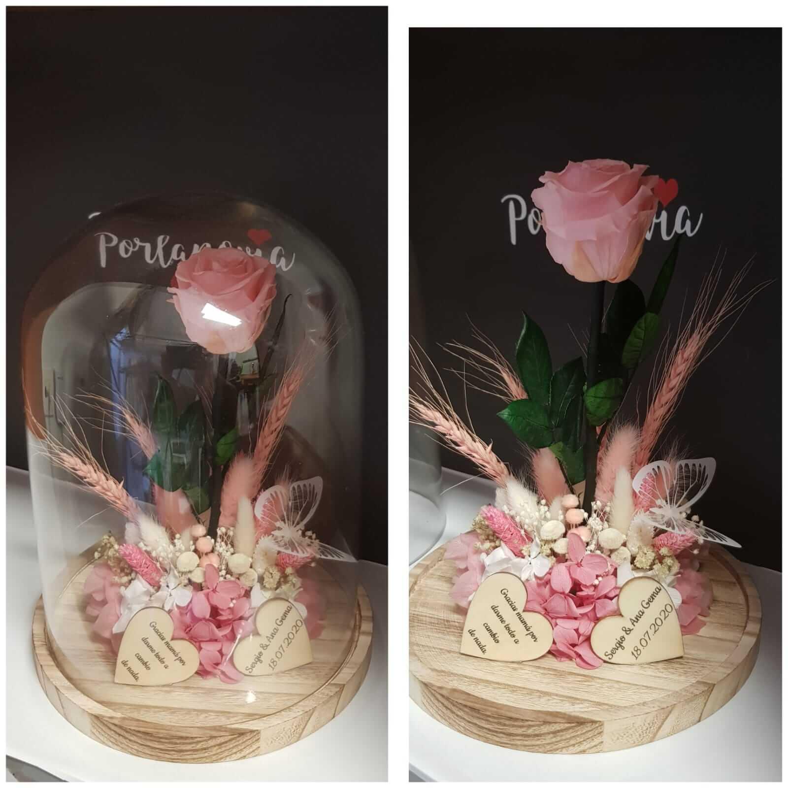 width= cupula de cristal - Cupula de cristal con rosa preservada 2 - Cupula de cristal con rosa preservada
